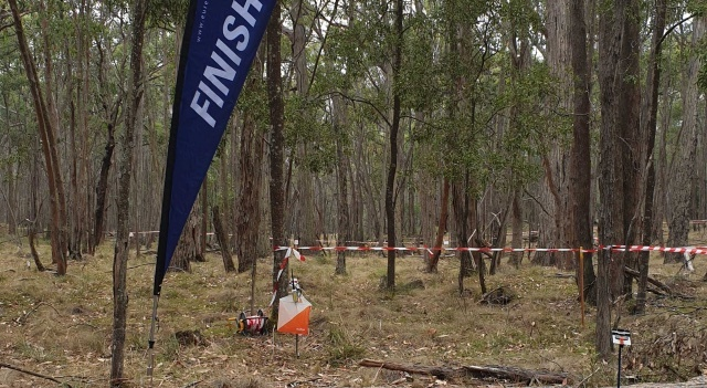Finish and Forest at Petticoat Gully 11 Mar 2019